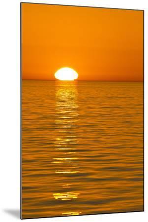 Sunrise, Gulf of California (Sea of Cortez), Baja California, Mexico, North America-Michael Nolan-Mounted Photographic Print