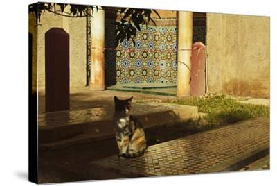 Saadian Tombs, Medina, Marrakesh, Morocco, North Africa, Africa-Jochen Schlenker-Stretched Canvas Print