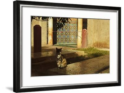 Saadian Tombs, Medina, Marrakesh, Morocco, North Africa, Africa-Jochen Schlenker-Framed Photographic Print