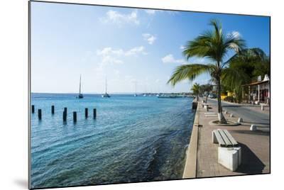 Pier in Kralendijk Capital of Bonaire, ABC Islands, Netherlands Antilles, Caribbean-Michael Runkel-Mounted Photographic Print