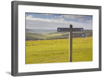 The Rolling Hills of the South Downs National Park Near to Brighton, Sussex, England, UK-Julian Elliott-Framed Photographic Print