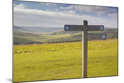 The Rolling Hills of the South Downs National Park Near to Brighton, Sussex, England, UK-Julian Elliott-Mounted Photographic Print
