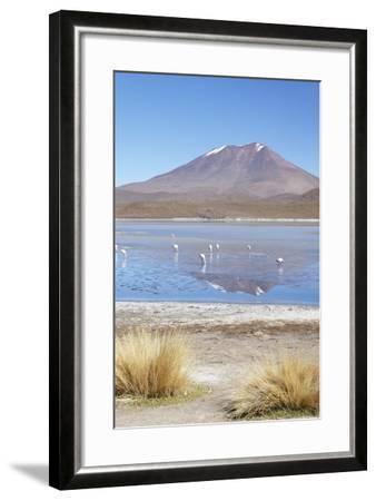 Flamingoes at Laguna Adeyonda on Altiplano, Potosi Department, Bolivia, South America-Ian Trower-Framed Photographic Print