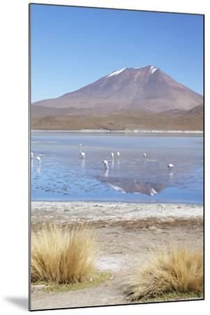 Flamingoes at Laguna Adeyonda on Altiplano, Potosi Department, Bolivia, South America-Ian Trower-Mounted Photographic Print