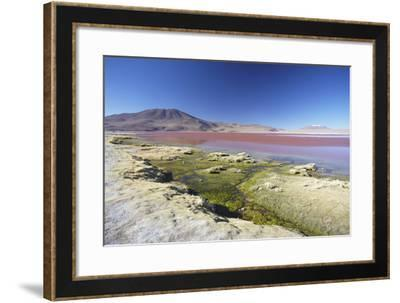 Laguna Colorada on the Altiplano, Potosi Department, Bolivia, South America-Ian Trower-Framed Photographic Print