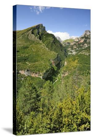 Anisclo Canyon and Eroded Karst Mondoto Peak, Ordesa and Monte Perdido Nat'l Pk, Huesca, Spain-Nick Upton-Stretched Canvas Print