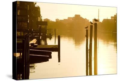 Sunrise Along the Channels Lined with Vacation Houses-Stephen St^ John-Stretched Canvas Print