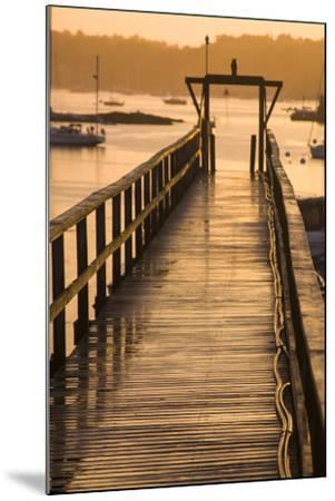 Golden Sunlight on a Pier, Boats, and Water at Sunset-Jonathan Irish-Mounted Photographic Print