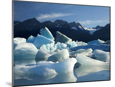 Icebergs Floating in Alsek Lake. Glacier Bay National Park, Ak.-Justin Bailie-Mounted Premium Photographic Print