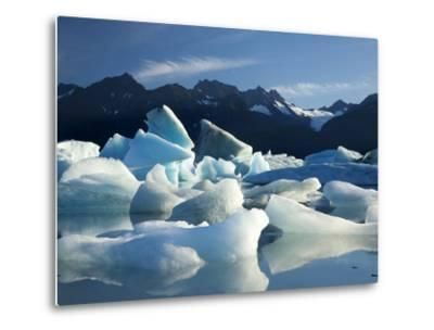 Icebergs Floating in Alsek Lake. Glacier Bay National Park, Ak.-Justin Bailie-Metal Print