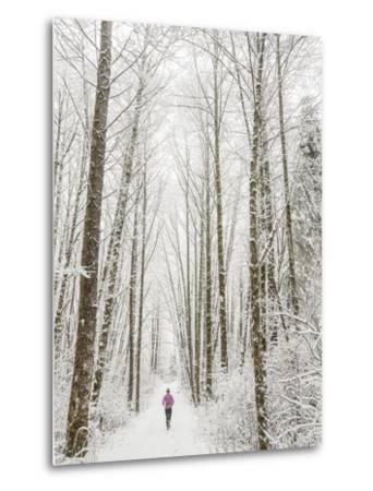 Winter Trail Running-Steven Gnam-Metal Print