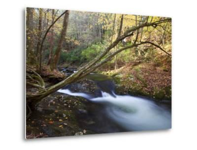 The Little River, Great Smoky Mountains National Park, Tn-Ian Shive-Metal Print