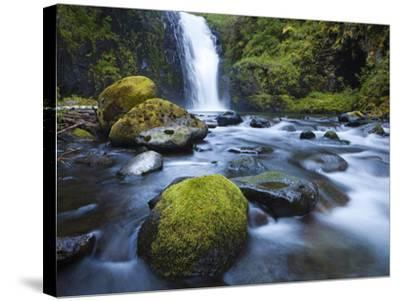 Seven Mile Falls, Eagle Creek, Oregon-Ethan Welty-Stretched Canvas Print