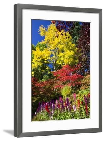 Autumn Color, Butchard Gardens, Victoria, British Columbia, Canada-Terry Eggers-Framed Photographic Print