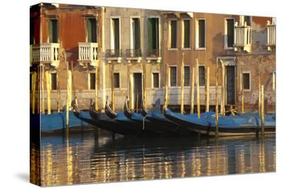 Gondolas Along the Grand Canal in Venice, Italy-David Noyes-Stretched Canvas Print