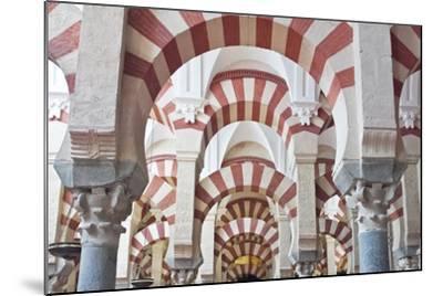 Catedral Mosque of Cordoba, Interior, Cordoba, Andalucia, Spain-Rob Tilley-Mounted Photographic Print