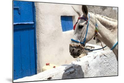 Donkey Waits at Cobbled Stairway, Santorini, Greece-David Noyes-Mounted Photographic Print