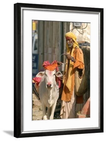 Sadhu, Holy Man, with Cow During Pushkar Camel Festival, Rajasthan, Pushkar, India-David Noyes-Framed Photographic Print