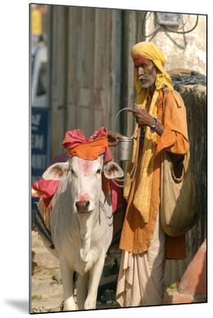Sadhu, Holy Man, with Cow During Pushkar Camel Festival, Rajasthan, Pushkar, India-David Noyes-Mounted Photographic Print