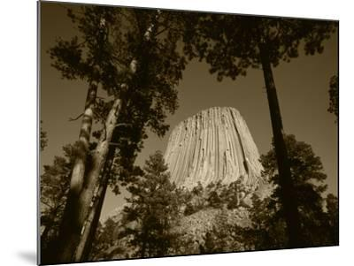 Devil's Tower National Monument at Dusk, Hulett, Wyoming, USA-Walter Bibikow-Mounted Photographic Print