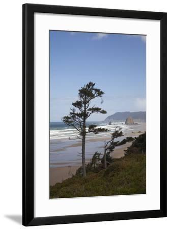 Cannon Beach and Haystack Rock, Oregon, USA-Jamie & Judy Wild-Framed Photographic Print