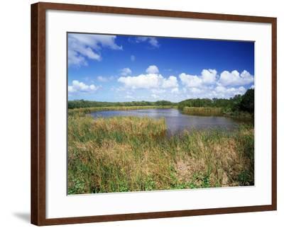 View of Eco Pond, Everglades National Park, Florida, USA-Adam Jones-Framed Photographic Print