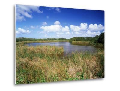 View of Eco Pond, Everglades National Park, Florida, USA-Adam Jones-Metal Print
