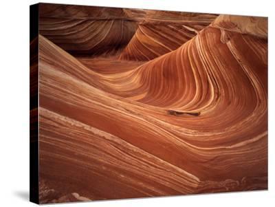 Wave, Coyote Buttes Area, Vermilion Cliffs Wilderness Area, Paria Canyon, Arizona, USA-Adam Jones-Stretched Canvas Print