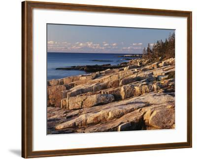 Mt Desert Island, View of Rocks with Forest, Acadia National Park, Maine, USA-Adam Jones-Framed Photographic Print