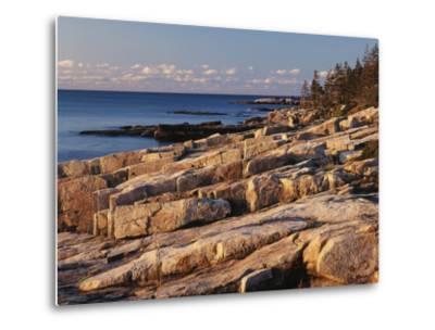 Mt Desert Island, View of Rocks with Forest, Acadia National Park, Maine, USA-Adam Jones-Metal Print