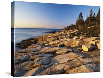 Mt Desert Island, View of Rocks with Forest, Acadia National Park, Maine, USA-Adam Jones-Stretched Canvas Print