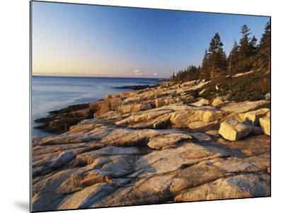 Mt Desert Island, View of Rocks with Forest, Acadia National Park, Maine, USA-Adam Jones-Mounted Photographic Print