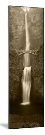 View of Multnomah Falls in Columbia Gorge, Oregon, USA-Walter Bibikow-Mounted Photographic Print