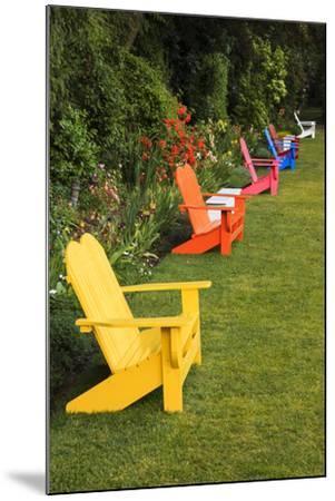 Garden Bench, Schreiner's Iris Gardens, Keizer, Oregon, USA-Rick A^ Brown-Mounted Photographic Print