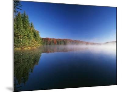 Autumn Trees, Adams Reservoir, Woodford State Park, Vermont, USA-Adam Jones-Mounted Photographic Print