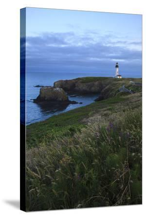 Historic Yaquina Head Lighthouse, Newport, Oregon, USA-Rick A^ Brown-Stretched Canvas Print
