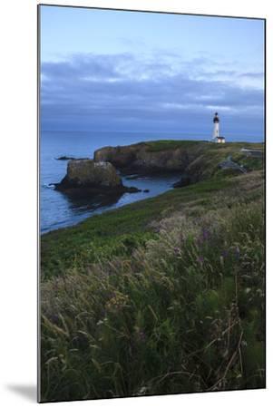 Historic Yaquina Head Lighthouse, Newport, Oregon, USA-Rick A^ Brown-Mounted Photographic Print