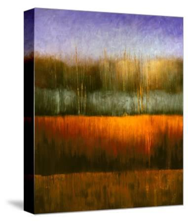 Theater View-Gregory Garrett-Stretched Canvas Print