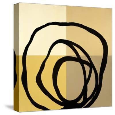 Swirl Pattern-Gregory Garrett-Stretched Canvas Print