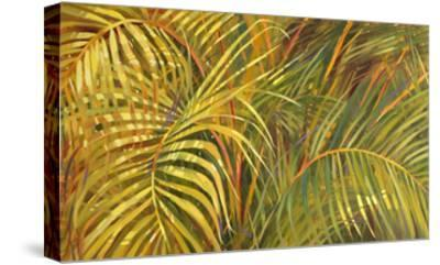 Tropical Light-Darrell Hill-Stretched Canvas Print