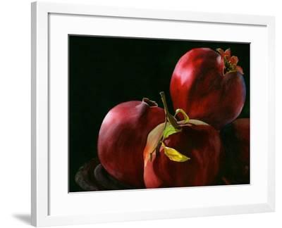 Four Pomegranates-Terri Hill-Framed Premium Giclee Print