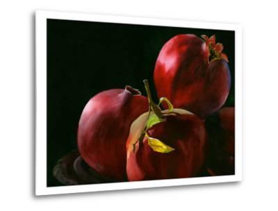 Four Pomegranates-Terri Hill-Metal Print