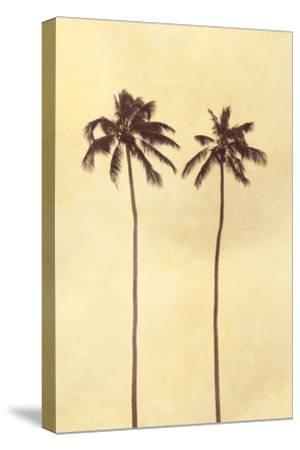 Palm Vista II-Thea Schrack-Stretched Canvas Print