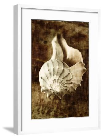 Seaside Portrait III-Thea Schrack-Framed Premium Photographic Print