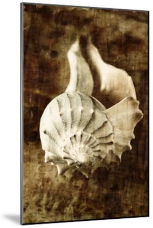 Seaside Portrait III-Thea Schrack-Mounted Premium Photographic Print