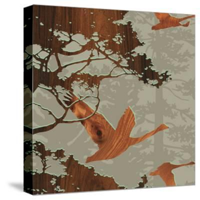 Bird 2-jefdesigns-Stretched Canvas Print