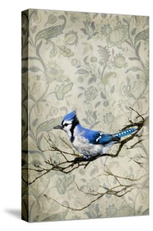 Blue Jay-GI ArtLab-Stretched Canvas Print