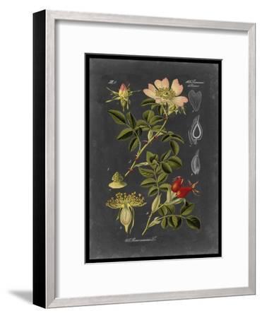 Midnight Botanical I-Vision Studio-Framed Premium Giclee Print