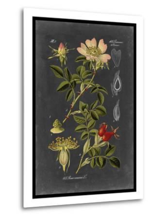 Midnight Botanical I-Vision Studio-Metal Print
