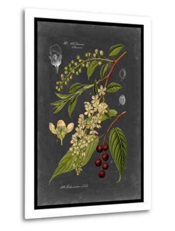 Midnight Botanical II-Vision Studio-Metal Print
